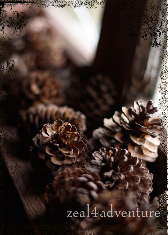 ws-2-pine-cones