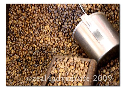 baguio-coffee