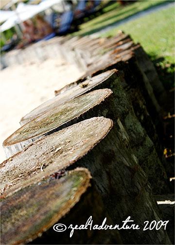 logs-shangrila