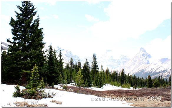 Parker-Ridge-Trail-3