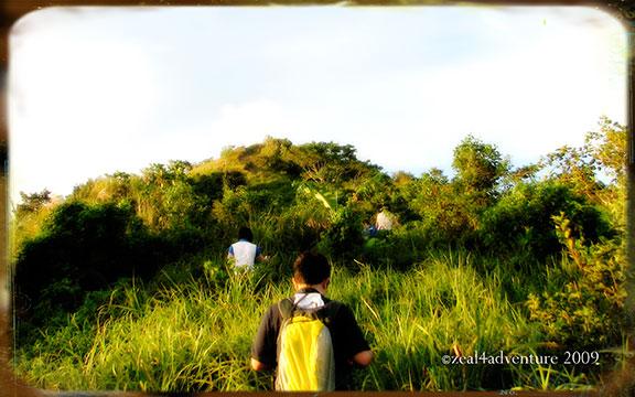 trail-to-summit