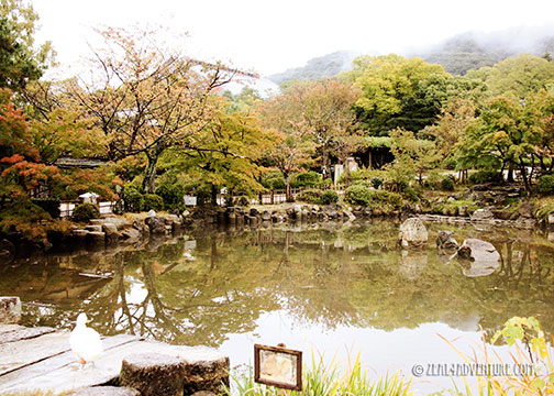 murayama-pond