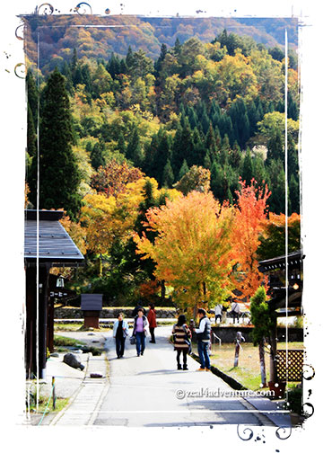 Ogimachi-scenery
