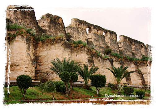 sahrij-Swani-wall