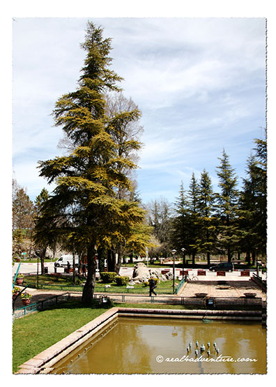 the-plaza