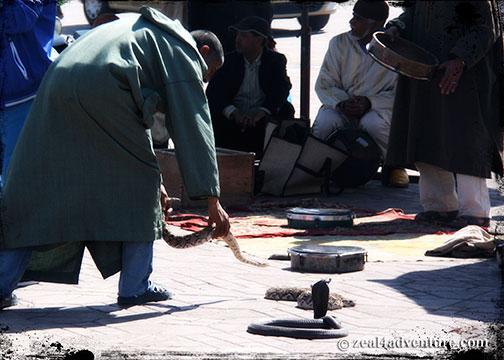 snake-charmers