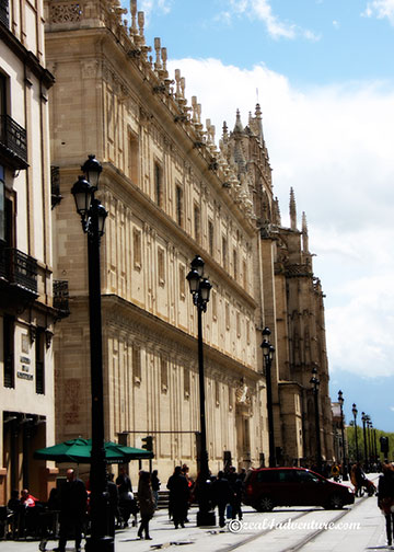 The-Cathedral-along-Avenida