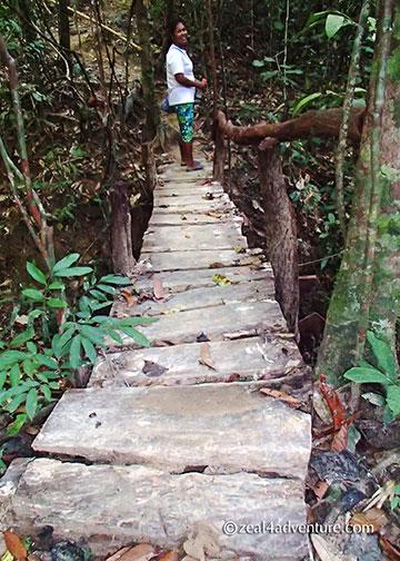 one-among-many-bridges