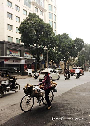 tree-lined-boulevard