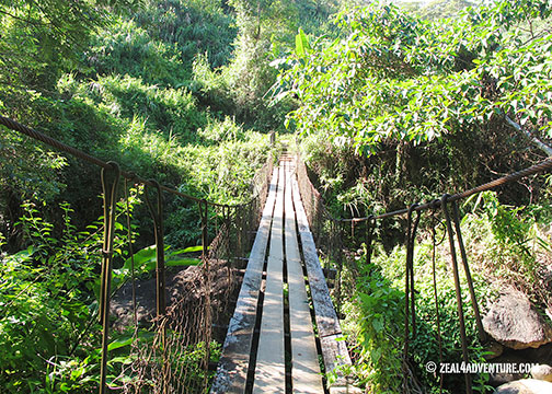 hanging-bridge