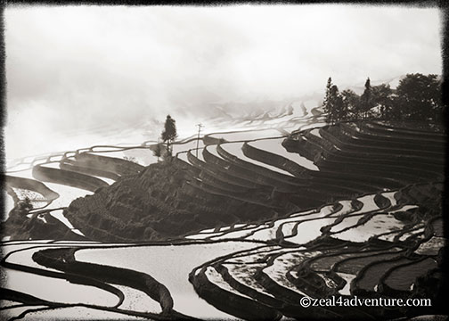 duoyishu-terraces-upclose