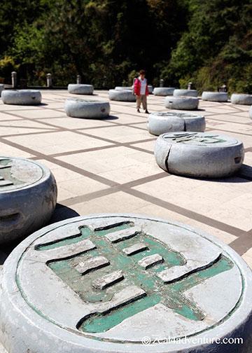 giant-zhenlong-board