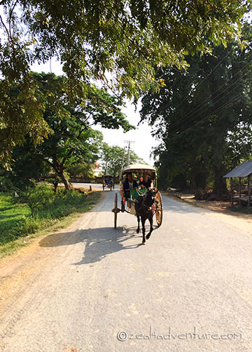horse-cart