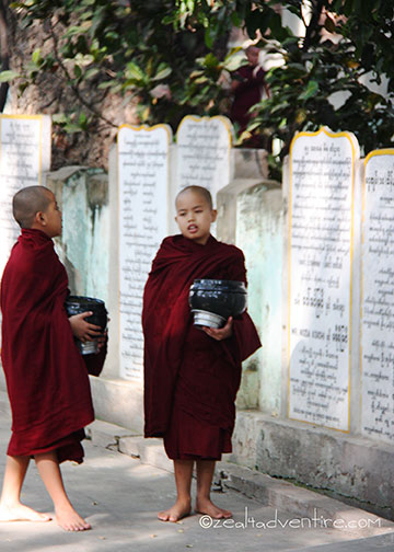 novice-monks